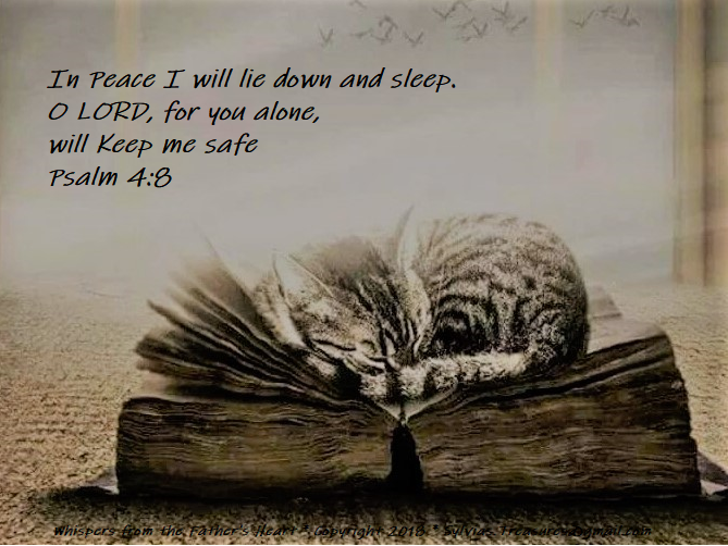cat on bible.psalm 4.8