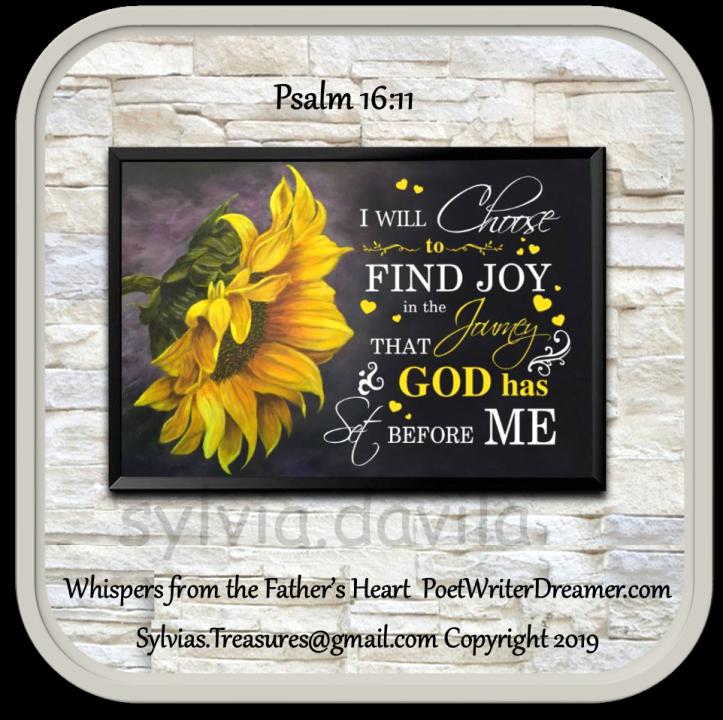 choose to find joy_InPixio